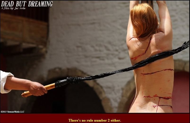 Bdsm slave whipping story