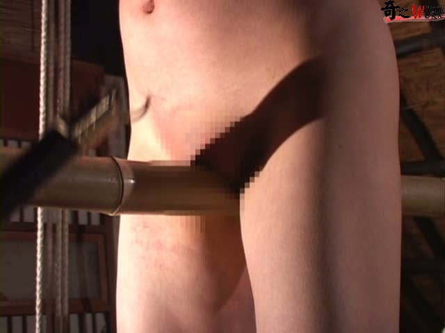 vidclips bondage blog Irreversible